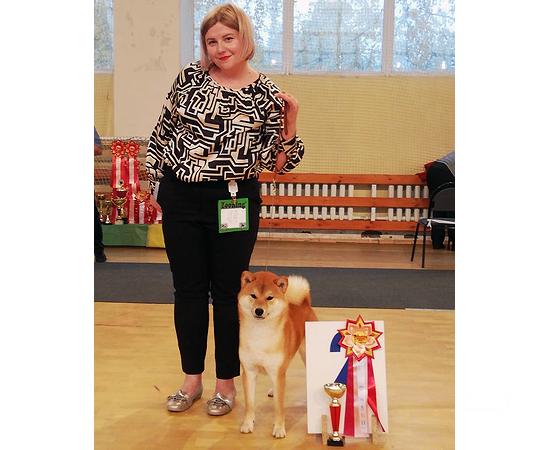 первое место на выставке собак_1