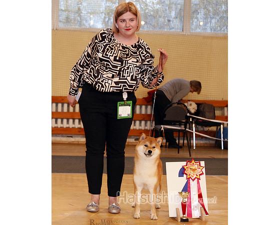 Eiji Giyoi второе место в юниорах на выставке собак